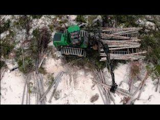 Arbeta med skogsbruk