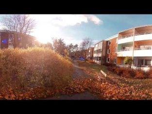 Virtuell film om att arbeta i trädgårdsbranschen