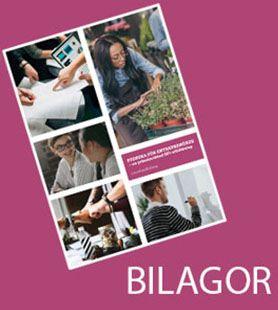 Svenska för entreprenörer, bilaga projektarbete: Egenföretagare - något för mig