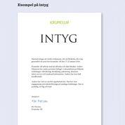iPraktiken företag - Exempel på intyg