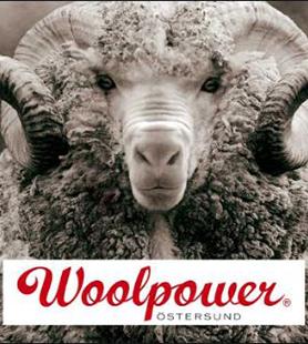 Intervju med entreprenör Adam Brånby – Woolpower